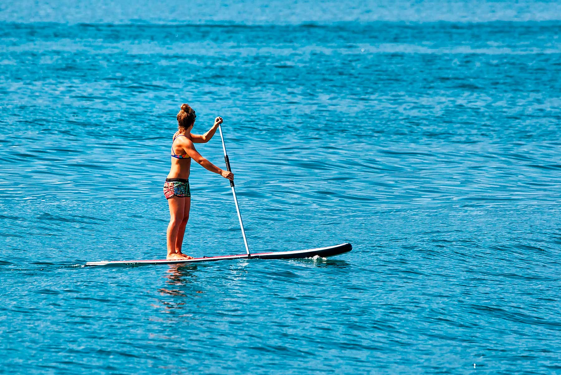 Springwater Hill - Columbia Lake activities - Paddleboarding